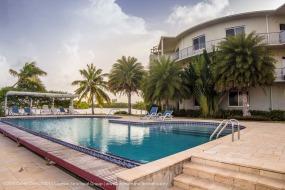 Luxury Concrete Condominiums